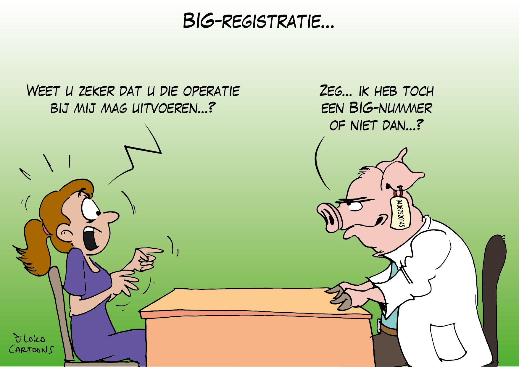 BIG-registratie…