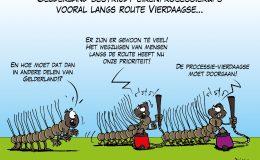 Gelderland bestrijdt eikenprocessierups vooral langs route Vierdaagse
