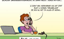 Schouw Brunssummerheide in zaak-Nicky Verstappen
