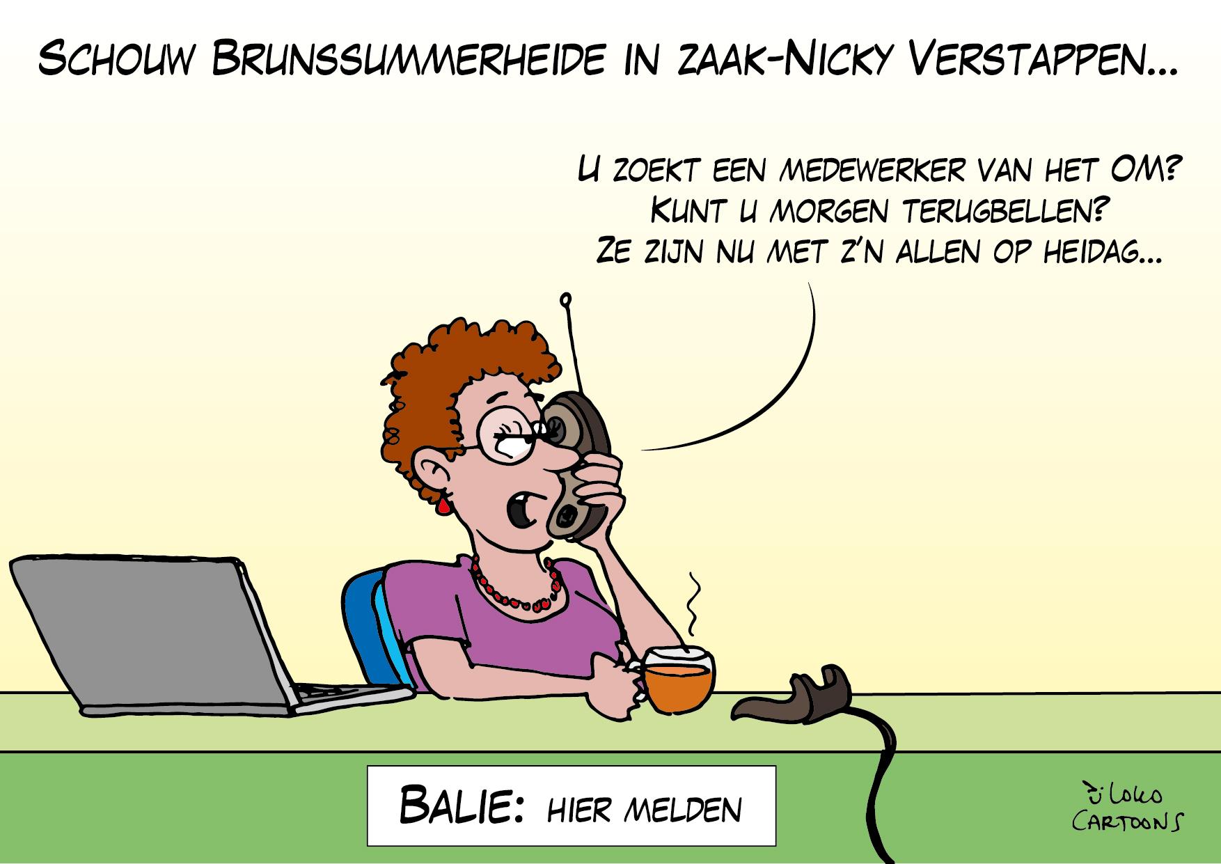 Schouw Brunssummerheide in zaak-Nicky Verstappen…