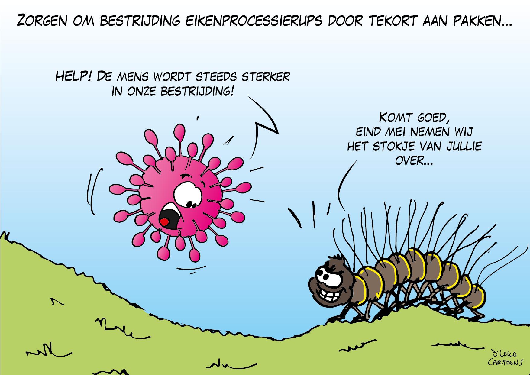 Zorgen om bestrijdig eikenprocessierups door tekort aan pakken…