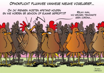 Ophokplicht pluimvee vanwege nieuwe vogelgriep Corona, coronavirus, coronacrisis, COVID-19